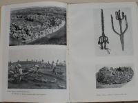 Machoň - Nalezená minulost (1951) věnování autora z r.1957