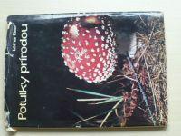 Ritter - Potulky prírodou II. (1973) slovensky