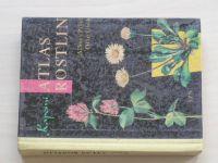 Pilát - Kapesní atlas rostlin (1964)