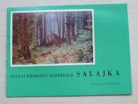 Musilová - Státní přírodní rezervace Salajka (1970)