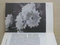 Jelínek - O kaktusech (1980)