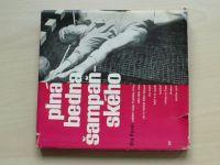 Pavel - Plná bedna šampaňského (1967)