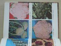 Šapiro - Ovoce a zelenina ve výživě člověka (1988)
