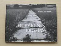 Miloš Vavrečka - Otevřeno, prosím (2009) foto Jindřich Štreit