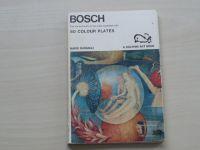 Bussagli - Bosch - 80 colour plates (1967) anglicky