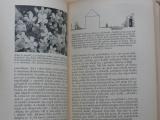 Nauman - Skalky a skalničky (1946) Hrst pokynů pro pěstitele alpinek