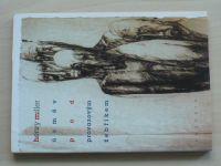 Henry Miller - Úsměv pod provazovým žebříkem (1996)