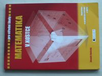 Vošický - Matematika v kostce (2008)