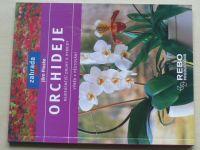 Pinske - Orchideje (2004)