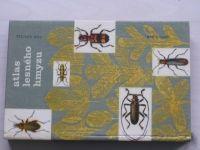 Loužil - Atlas lesného hmyzu (1961) slovensky