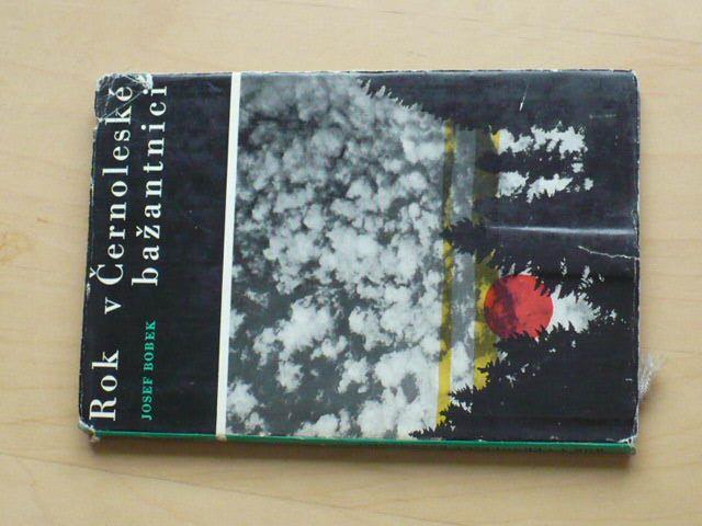 Bobek - Rok v Černoleské bažantnici (1966)