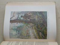 Klostermann - Ze světa lesních samot (1941)