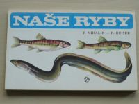 Mihálik, Reiser - Naše ryby (1988)