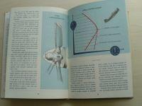 Seničkin - Motor za letu (1951)
