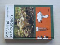 Klán - Co víme o houbách (1989)