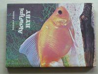 Zukal - Akvarijní ryby (1980)