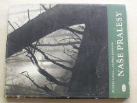 Janda, Jandová - Naše pralesy (Orbis 1950)