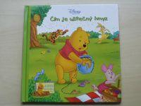 Zátiší Medvídka Pú - Čím je užitečný hmyz (2006)