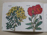 Nejtková - Hledáme léčivé rostliny (1986) omalovánky