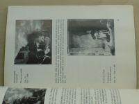 Průvodce drážďanskou galerií - sbírkou starých mistrů