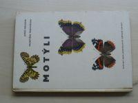Moucha, Procházka - Motýli (1962)