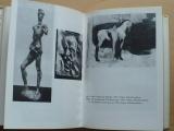 Matějček - Cesty umění (1984)