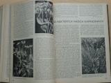 Naší přírodou 2. ročník (1938-1939)