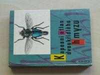 Javorek - Kapesní atlas dvoukřídlého hmyzu (1978)