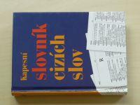 Kapesní slovník cizích slov (2006)