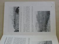Trenkle - Neuzeitlicher Pfirsichbau für den Erwerb und im Hausgarten