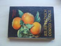 Kamenický, Kohout - Atlas tržních odrůd ovoce (1958)