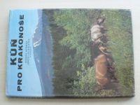 Heřman, Holeček - Kůň pro Krakonoše (1984)