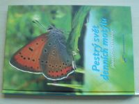 Martiško - Pestrý svět denních motýlů Jihomoravského kraje (2013)