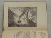 Seton - O veveřici (1925)