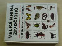 Velká kniha živočichů - hmyz - ryby - obojživelníci - plazi - ptáci - savci (2009)