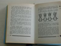 Co má znát a umět pionýr (Mladá fronta 1959)