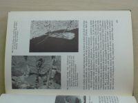 Strejček, Kubíková, Kříž - Chráníme naši přírodu (1983)
