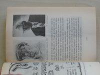 Shmeruk - Dějiny literatury jidiš (1996)