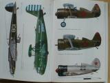 Vejřík - Vzestup a pád orlů Nipponu 1931-41 japonské letectvo