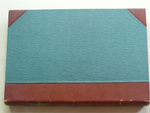 Mathesius - Dějiny literatury anglické v hlavních jejích proudech a představitelích část 1,2 (1910)
