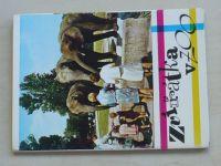 Veger - Zvířátka v ZOO soubor 12 pohlednic