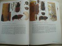 Novák, Hrozinka, Starý - Atlas hmyzích škůdců lesních dřevin (SZN 1974)