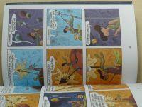 Sfar - Malý princ (2009) komiks