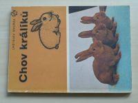 Dvořák - Chov králíků (1980)