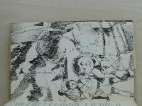 Foglar - Hoši od Bobří řeky (1969)
