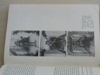 Janáček - České dějiny - Doba předbělohorská 1526-1547 - Kniha I. díl. I. (1971)