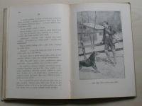 Heer - Král Berniny - Román ze švýcarských velehor, il. Goth