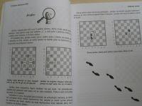 Todd Bardwick - Učebnice šachu pro děti - Úvod šachového detektiva do královské hry (2016)