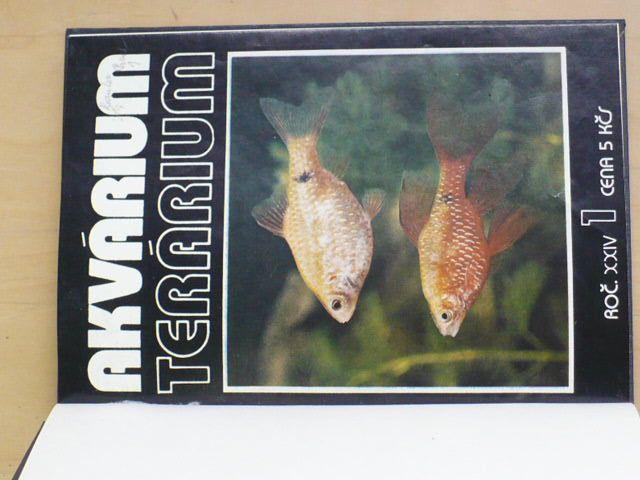 Akvárium a terárium 1982
