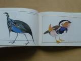 Veger - Cizokrajní ptáci v zahradě (1977)